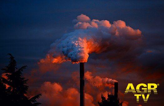 Giornata mondiale dell'ambiente, preservare la natura sempre più a rischio