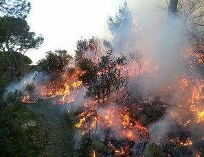 L'Aquila, disastro ambientale sulle montagne per il fuoco