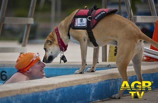 Fiumicino, inaugurato un corso di nuoto per disabili