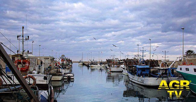 Fiumicino esce dal FLAG Lazio mare centro