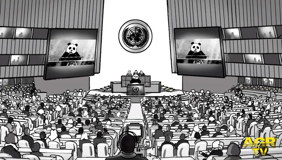 Il WWF, monito all'ONU per la difesa della natura