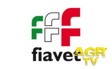 Fiavet Lazio risponde alle accuse di abusivismo