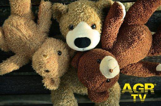 WWF gli orsi invadono ...Roma