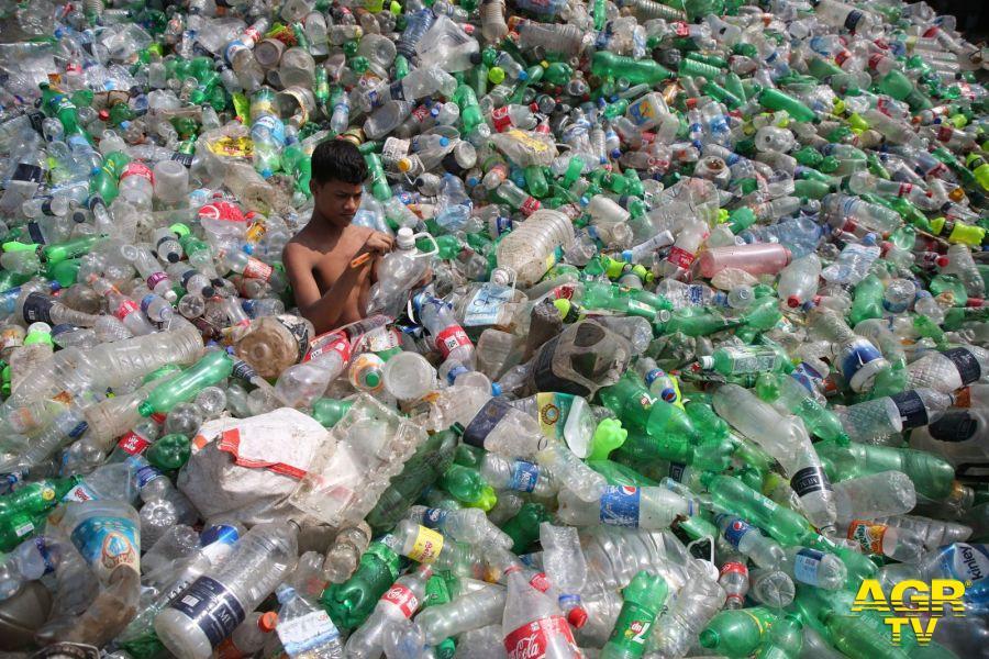 WWF, o.k. al Salvamare approvato alla Camera