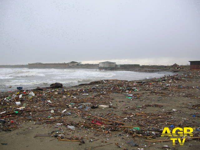 Ostia, emergenza spiagge, subito i primi interventi