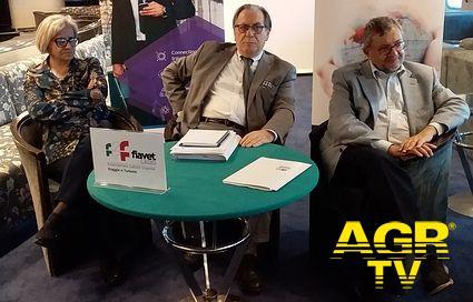 Cesare Altobelli, Consigliere di Fiavet Lazio