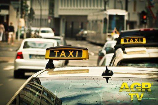 Roma, rischia la licenza il tassista che ha colpito il cliente in aeroporto