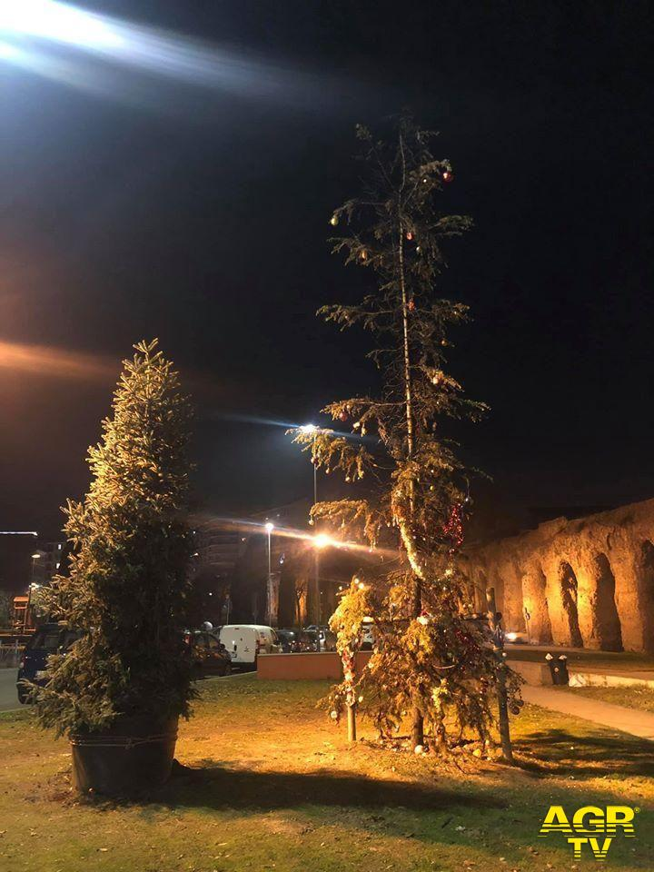 Roma, parco dell'Acquedotto, piantato l' albero donato dalla Raggi al posto di quello incendiato