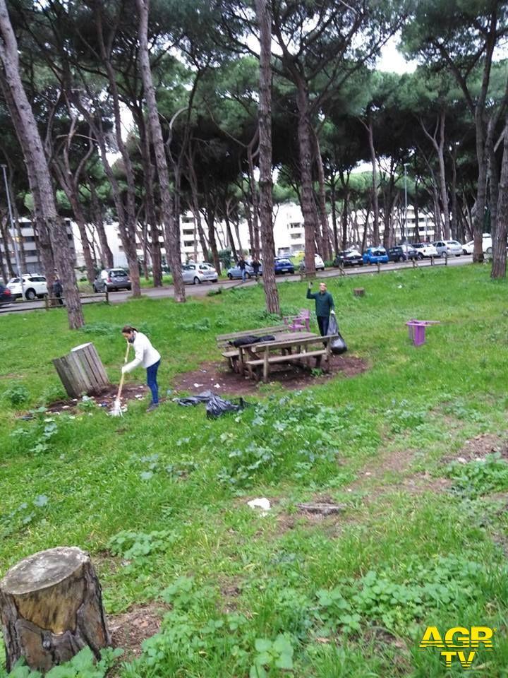 pulizia dei parchi