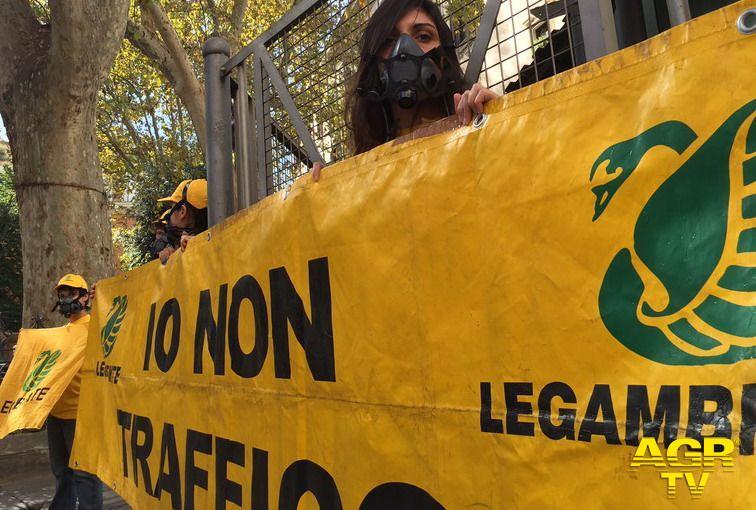 Roma, oggi stop a tutti i diesel