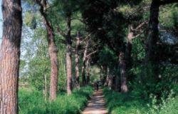 RomaNatura, tutte le criticità e potenzialità del parco di Aguzzano