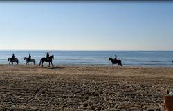 Passeggiata a cavallo sulla spiaggia del litorale romano