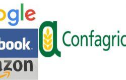 Web Tax: Possibili nuovi dazi USA anche per l'agroalimentare made in Italy
