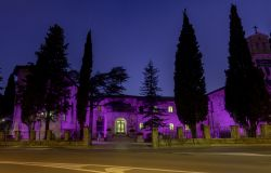 Giornata Mondiale per l'Epilessia  l'istituto Serafico di Assisi si Illumina di Viola