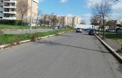 interventi diserbo in Via di Saponara e in Via Luigi Cochetti