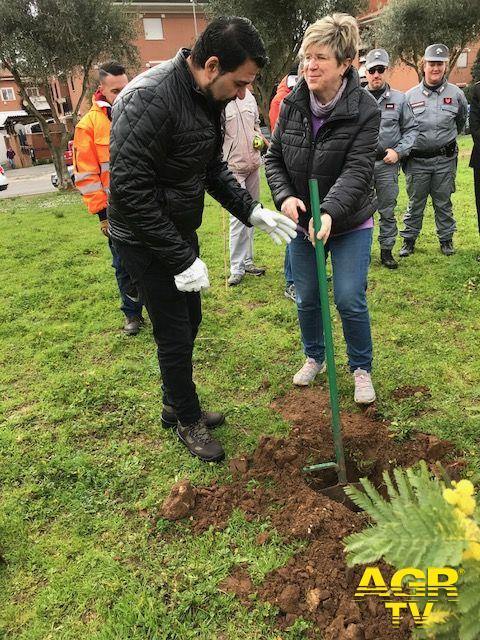 La Presidente Di Pillo e l'Assessore Ieva piantano un albero di mimosa