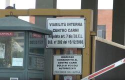 Davide Bordoni: Il Centro Carni di Roma non si ferma