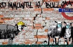 Coronavirus,Boris Johnson e l'immunità di gregge secondo Laika