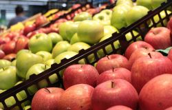 Istat, a maggio prezzi in calo dello 0,2%. Ma rincarano i generi alimentari +2,5%