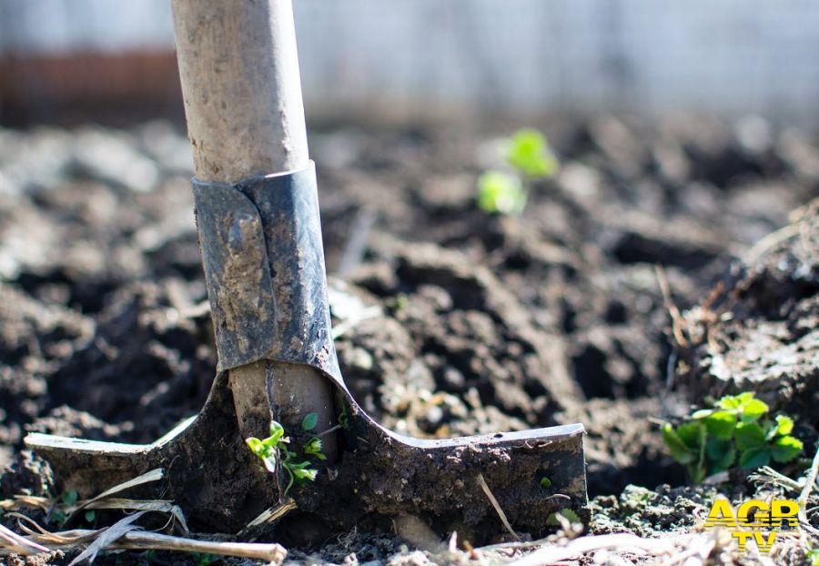 Agricoltura, chiuse oltre 7mila aziende