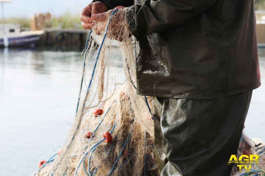 Effetto coronavirus.... sulla piccola pesca