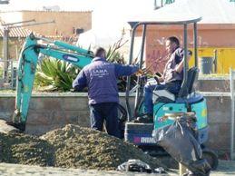 Disinfestazione spiagge, WWF: evitare nuovi scempi ambientali