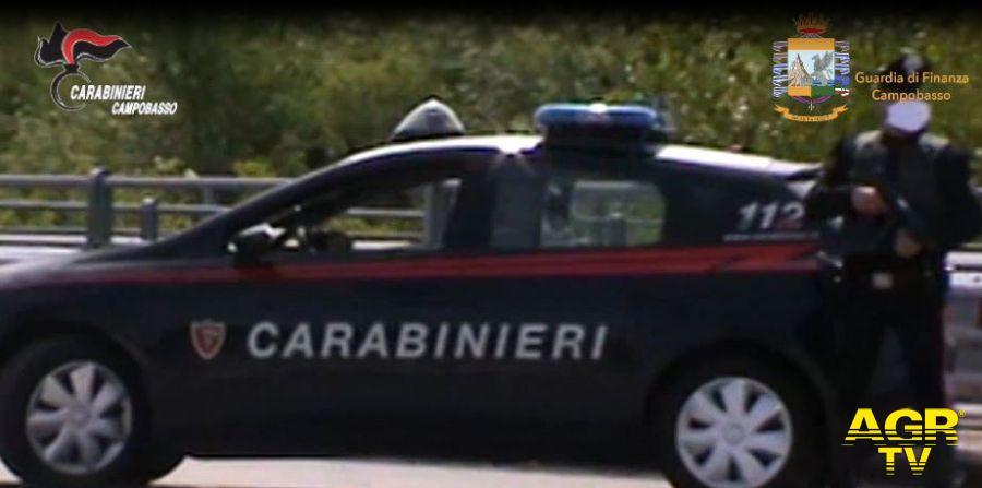I Carabinieri fanno piazza pulita in Molise