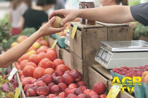 Fiumicino, salta il mercato del sabato, è scontro con l'amministrazione