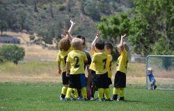 Testo unico dello sport, il Pd deve essere il motore del cambiamento....