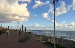 Ostia ponente, barriere frangivento per impedire l'erosione