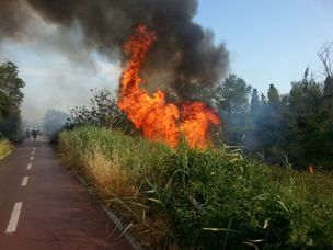 un incendio a Castelfusano