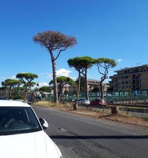 Ostia, partono i lavori sulla via Ostiense, disagi fino al 7 agosto