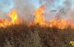 Ancora fiamme a Dragoncello, incuria, abbandono e le sterpaglie si incendiano