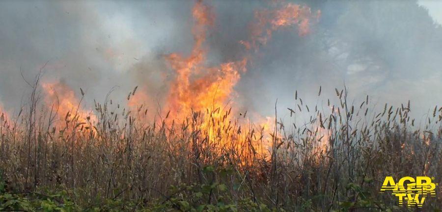 Incendio Sterpaglie tra via Ottone Fattiboni e Via Alessandro Ruspoli