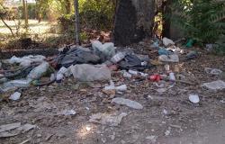 X Municipio, prosegue la rimozione dei rifiuti