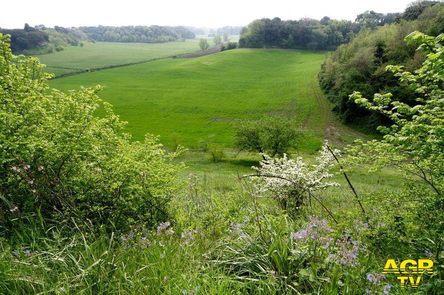 Lagambiente: Decima Malafede, nasce il più grande parco di Roma Natura