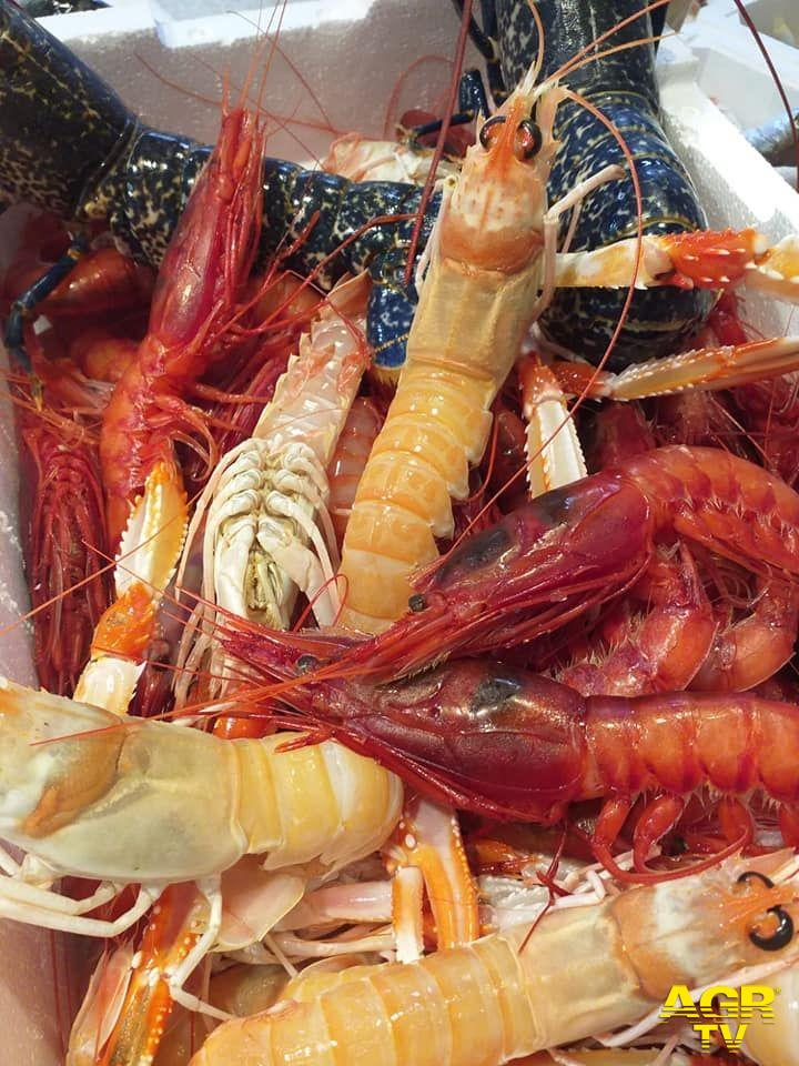Infernetto, Michelino Fish riapre la pescheria ed il ristorante