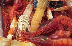 Infernetto, chiuso per sanificazione pescheria &ristorante di Michelino Fish