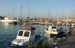 Porto di Catania, sventato pericolo Citrus Black Spot, impedito l'accesso a due container provenienti dall'Argentina