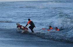 Dog sport, allenarsi con il proprio cane