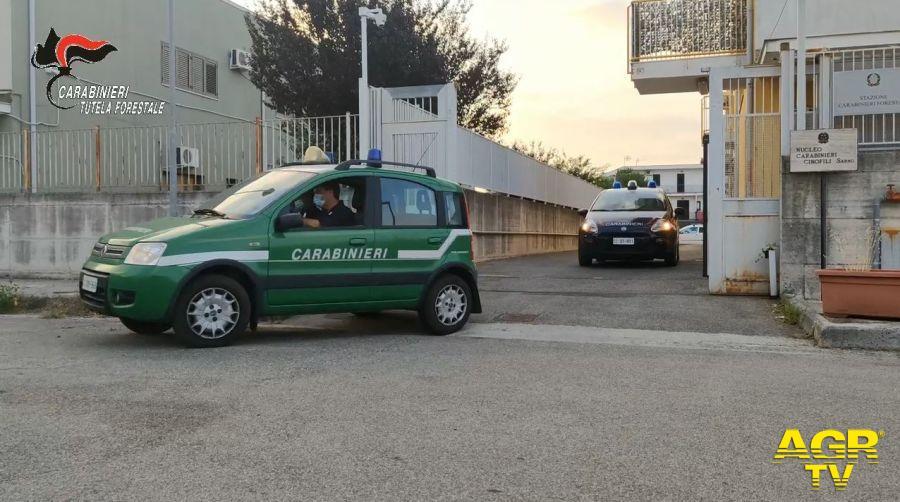Stazione Carabinieri Forestale