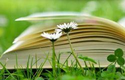 Parole per ripartire...il 27 e 28 torna la Festa del libro e della lettura di Ostia
