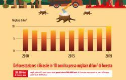 WWF, gli incendi rischiano di compromettere l'Amazzonia, il polmone verde del pianeta