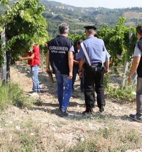 Catania, sei in manette per traffico di droga