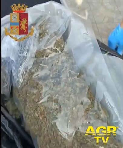 Polizia di Stato, Sequestrati oltre 6 kg di sostanza stupefacente