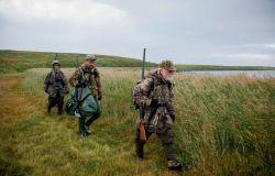 Europa, stop alla caccia con il piombo nelle  zone umide