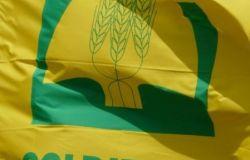 Elezioni usa, la Coldiretti esulta: ora tagliare mezzo miliardo di euro di dazi sull'agroalimentare made in Italy
