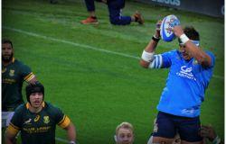 Rugby, al Franchi prima sfida della Autumn Nations Cup tra Italia e Scozia