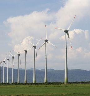 Green Deal europeo, per il passaggio all'energia pulita, si proceda in accordo con gli ambientalisti