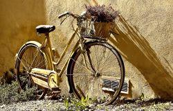 Fiumicino, le bici abbandonate per strada verranno rimosse e restaurate